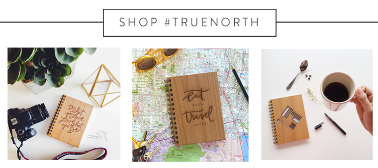Shop True North.png